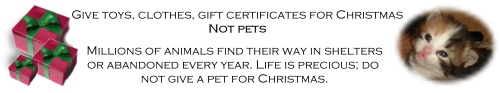 Never give pets for Christmas